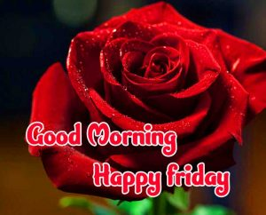 Friday Good Morning Images