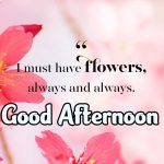 254+ Good Afternoon Images Photo Pictures Wallpaper HD Download